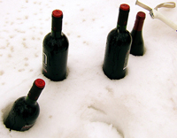 bottles_in_snow