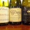 Pinot Bottles Oct 2011